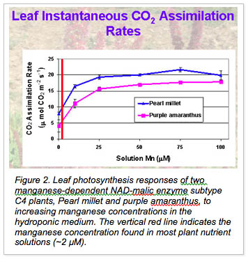 leaf instantaneous CO2 Assimilation rates